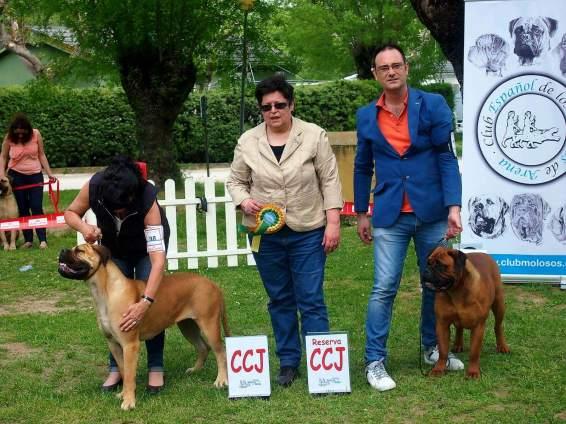 2016-05-21 Madrid Lola Res CCJ