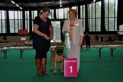 Babs Junior Benelux Winner (2)