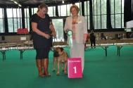 Babs Junior Benelux Winner