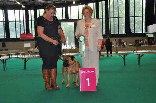 Babs Junior Benelux Winner
