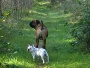 Bonke en Betsie (2)