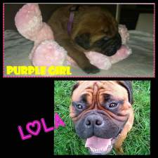 Lola 1 jaar